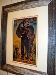 Jumbo The Giant Elephant